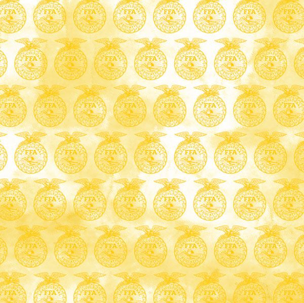 Scrappin Sports Stuff It Takes Two - Yellow FFA Emblems Paper - 12 x 12 acid and lignin free paper