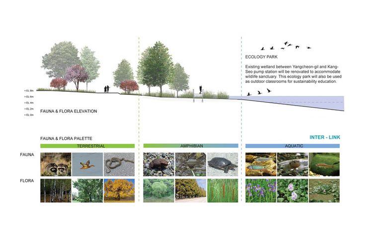 76 best images about planning flora fauna on pinterest for Terraplan landscape architects
