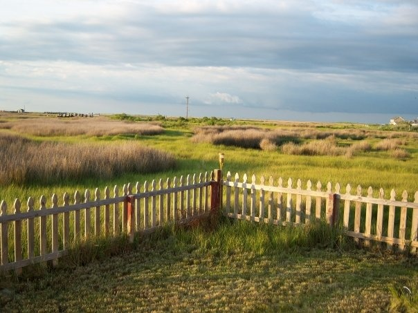 Tangier Island VA: Favorite Places, Eastern Shore, Islands Sit, Hometowntangi Islands, Tangier Islands, Chesapeake Bays, Hometown Tangi Islands, Enjoying Nature S, Nature S Beauty