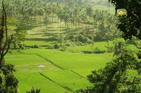Keindahan desa sawarna - banten