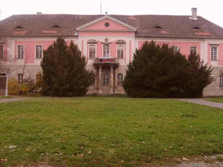 Il palazzo Zichy
