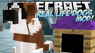 Minecraft | REAL LIFE DOGS MOD!! (Puppies, Kennels & More!) | Mod Showcase