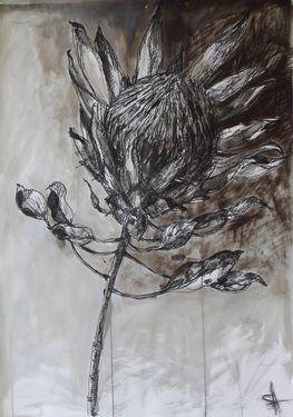 "Saatchi Art Artist Shauna Southam; Drawing, ""Protea"" #art"
