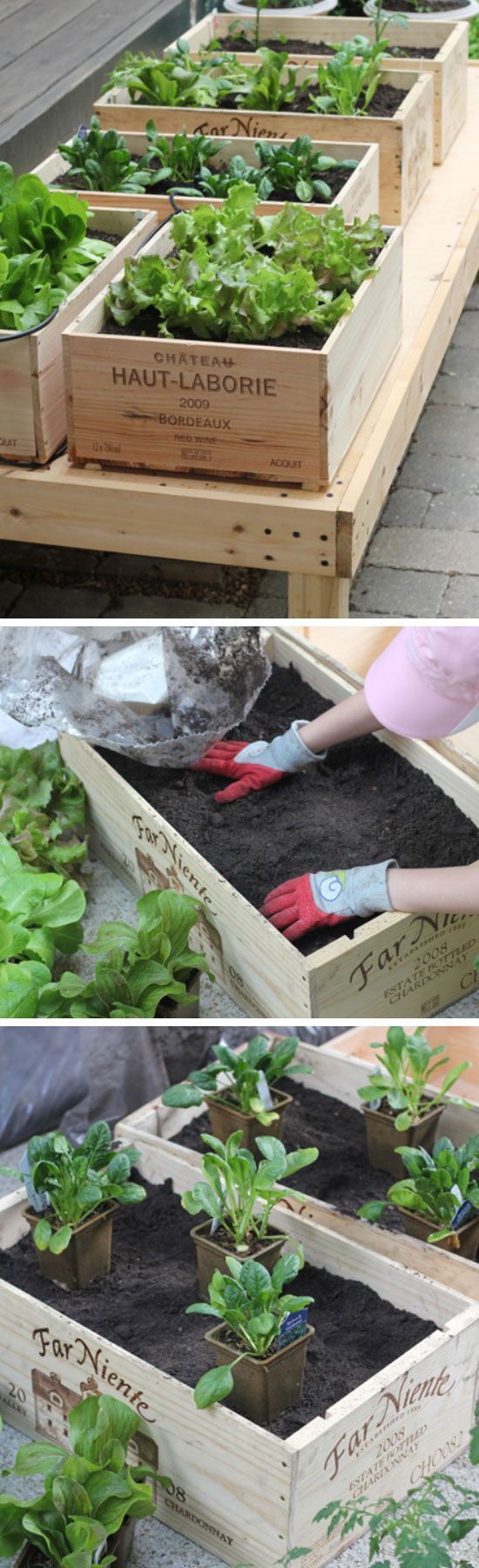 Upcycle Crates into Raised Vegetable Garden | Click Pic for 20 DIY Garden Ideas on a Budget | DIY Backyard Ideas on a Budget for Kids