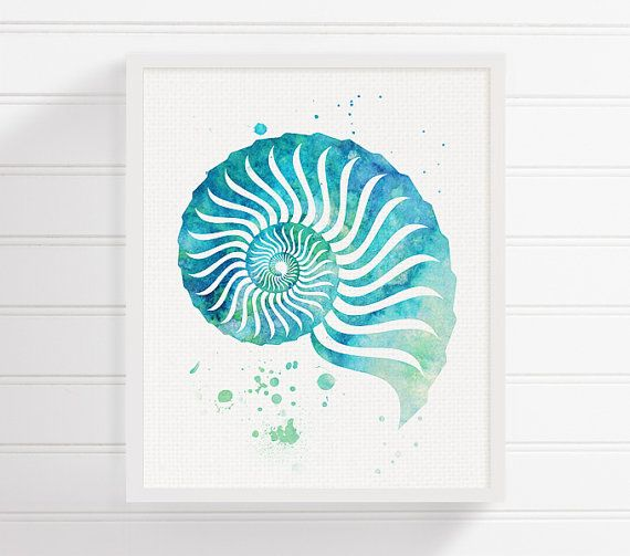 Watercolor Seashell, Seashell Art, Seashell Print, Sea Shell Painting, Coastal Wall Art, Bathroom Decor, Beach Art Print, Nautical Wall Art
