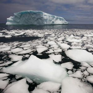 Newfoundland's Natural Wonders | Iceberg Alley | CoastalLiving.com