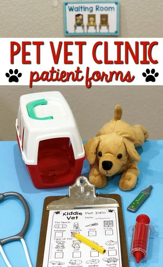 Dramatic Play Vet Clinic Dramatic Play Themes Dramatic Play Dramatic Play Centers