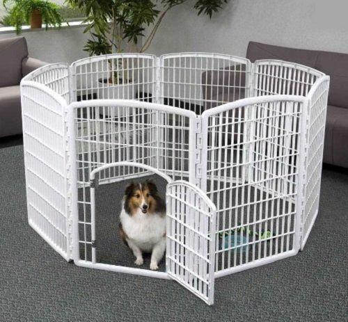 05d4f9521408cb2c33cb12c3c64c4d37--heavy-duty-dog-kennel-pet-pen
