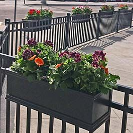 Black Railing Planters On Metal Fence At Local Restaurant