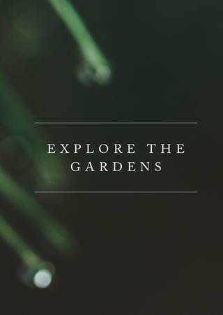 Woodlands Brochure by PegasusLife - issuu
