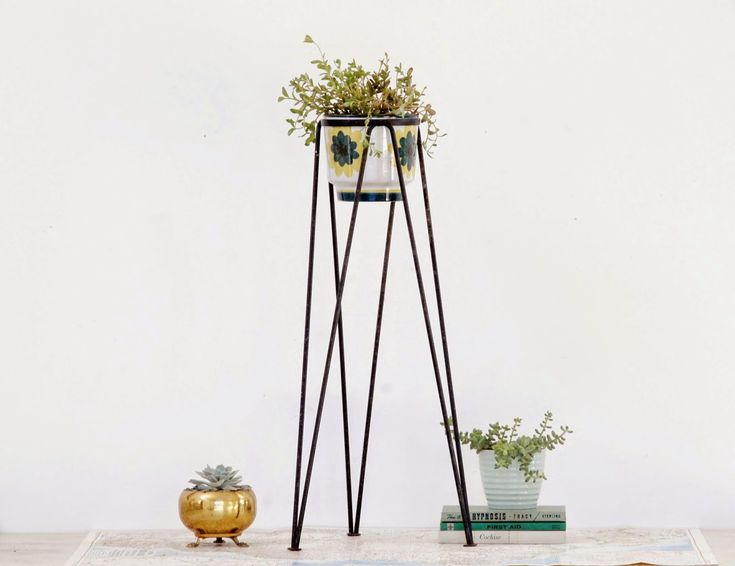 17 Best Ideas About Tall Plant Stands On Pinterest Green