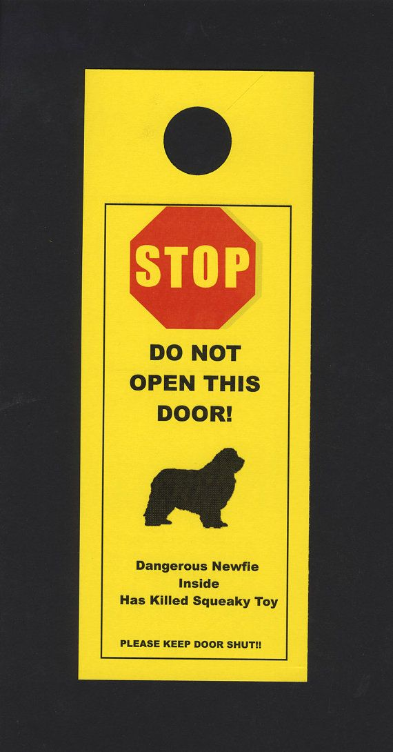 Dangerous Newfoundland doorknob #Newfoundland #Newfie