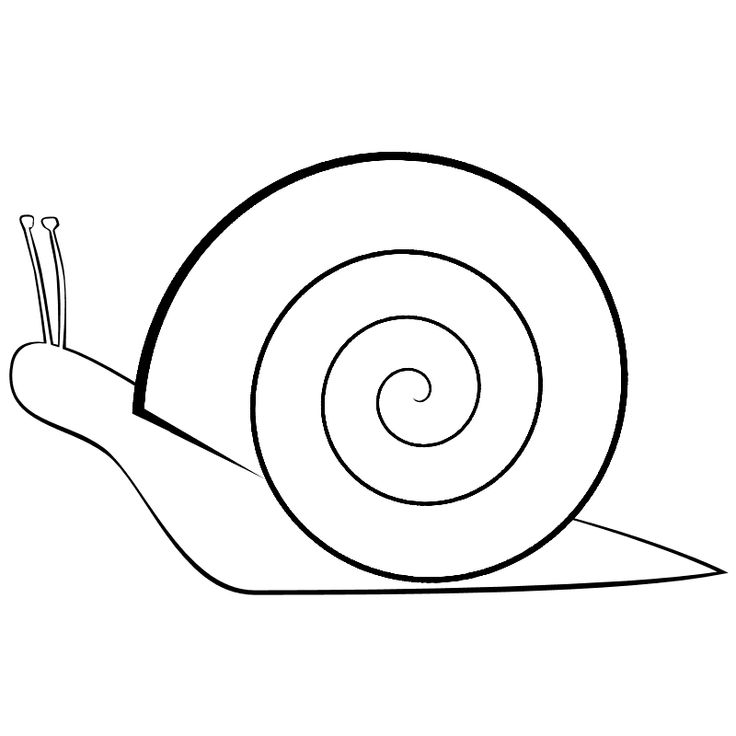 snail template Click on the thumbnails to download the