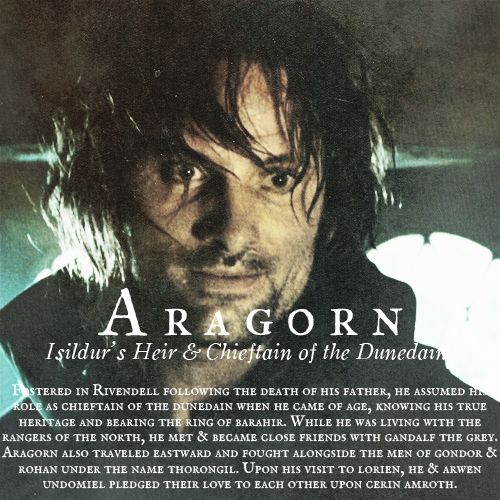 Aragorn, Isildur's Heir - Fostered in Rivendell following the death of his father, he assumed the role as Chieftain of the Dunedain when he came of age, knowing his true heritage and bearing the ring of Barahir. While he was living with the Rangers of the North, he met and became close friends with Gandalf. He also traveled eastward and fought alongside the men of Gondor and Rohan under the name Thorongil. Upon his visit to Lorien, he and Arwen pledged their love to each other