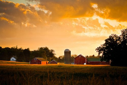 stunning image of a farmDreams, Josh Thompson, The Farms, Songs Hye-Kyo, Front Doors, Country Songs, Country Life, Red Barns, Country Barns
