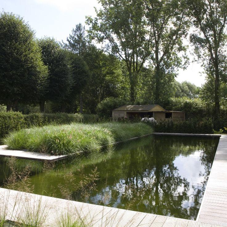 Zwemvijver in L-vorm in landelijke tuin met cederhouten poolhouse | De Mooiste Zwembaden
