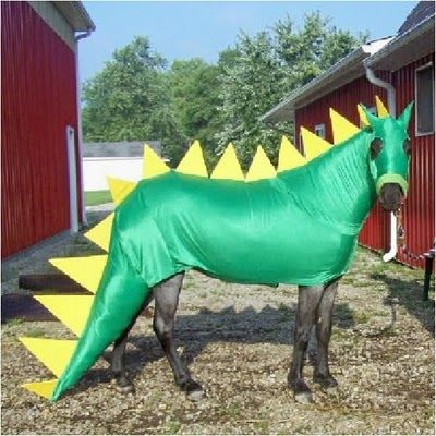 how to make a dragon costume for a horse