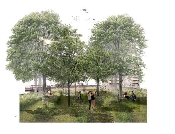 Imagen parque