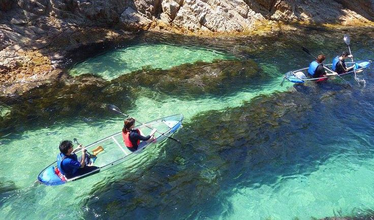 Visitors enjoy paddling in transparent kayaks off the coast of Tottori Prefecture.