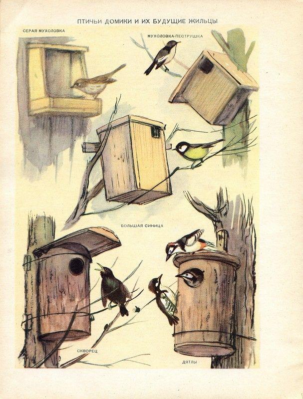 Детский календарь природа. 1959 г. В. Белышев