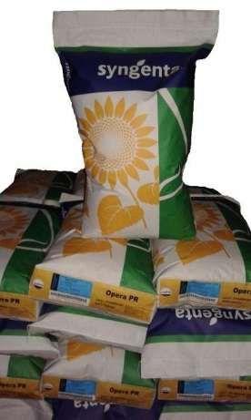 Семена кукурузы сои подсолнечника SYNGENTA (Опера ПР) Винница - изображение 1