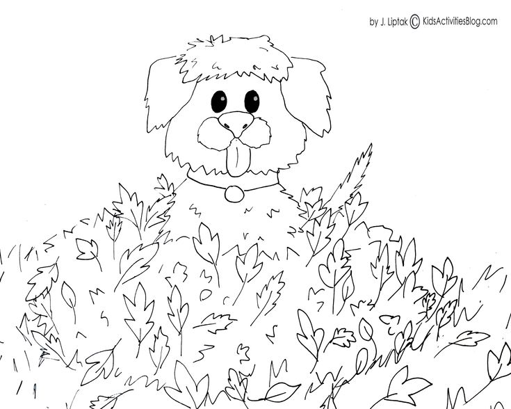 4 free printable fall coloring pages - Fall Coloring Pages Free