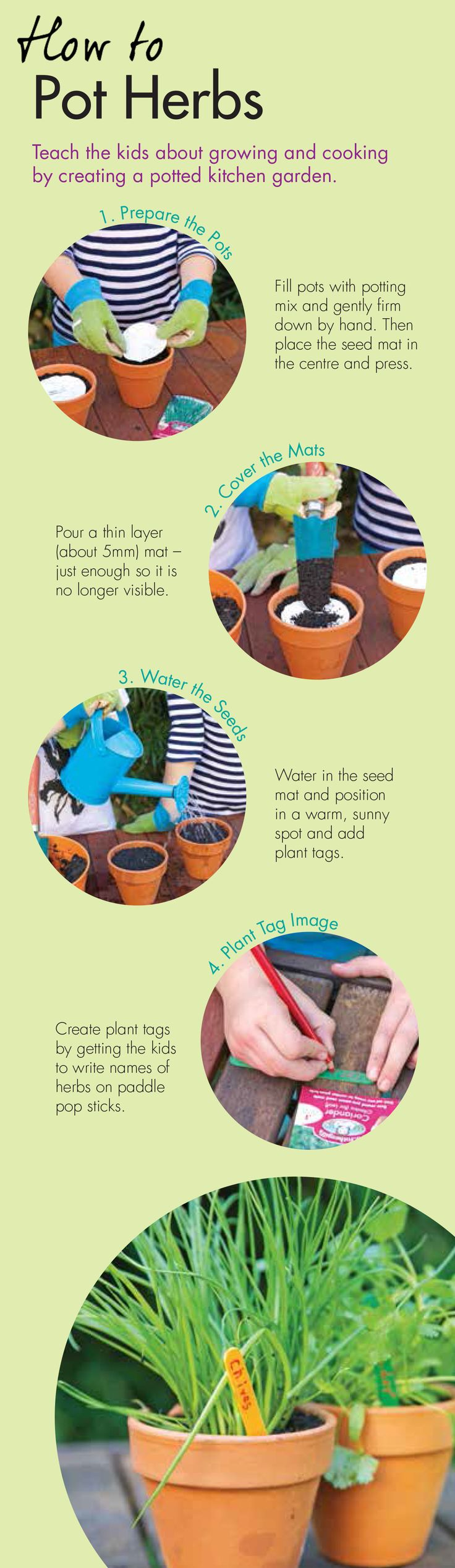 Looking for a fun activity for you and your #kids check out guide on how to #pot #herbs