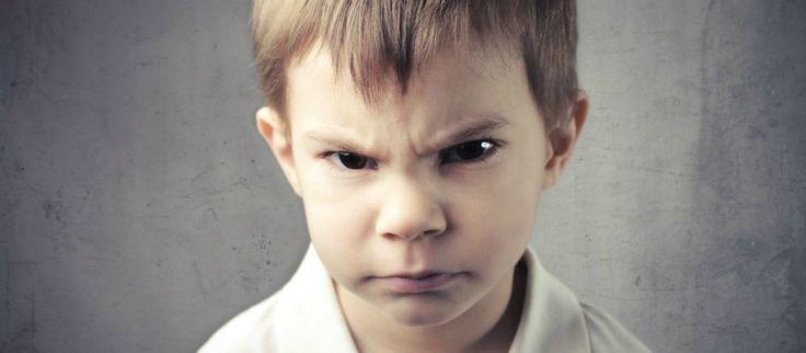 Impariamo a capire e controllare la rabbia La rabbia è un'emozione importante. Nasce per difenderci e permetterci di sopravvivere. Il momento d rabbia emozioni controllo