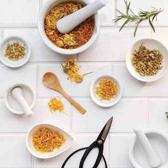 Herbal Medicine at Home: Be Your Own Herbalist
