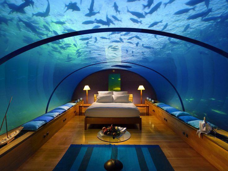 Best 25 underwater bedroom ideas on pinterest mermaid for Underwater bedroom designs