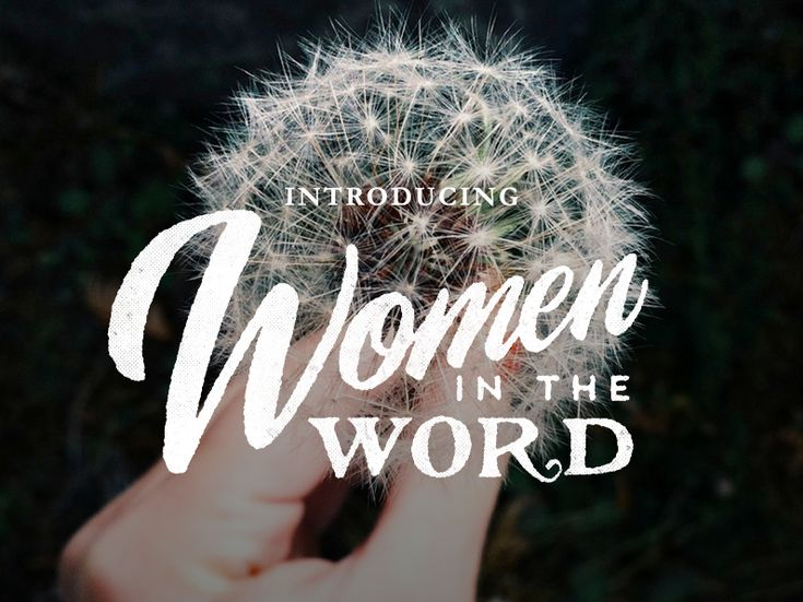"""""""Women In The Word"""" book!"""