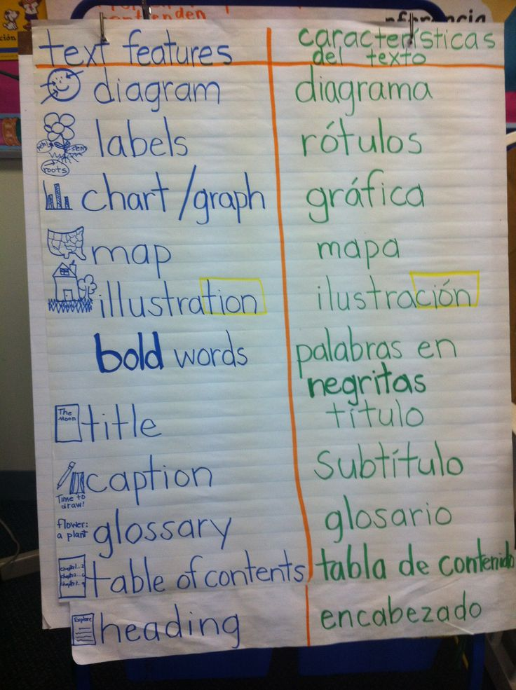 Non-fiction text features :: bilingual :: bridging vocabulary :: t chart