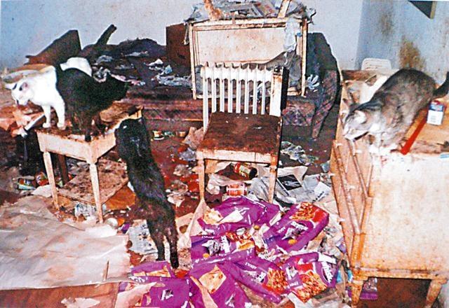 w takich warunkach zmarła Violetta Villas