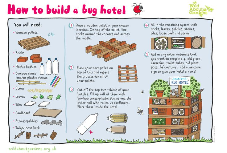We Love this from Wild About Gardens... follow the link to their site with instructions on how to build http://www.wildaboutgardensweek.org.uk/getmedia/f7323768-76c6-4937-8f8f-c2471ab8ed23/How-to-Build-a-Bug-Hotel-Activity-sheet
