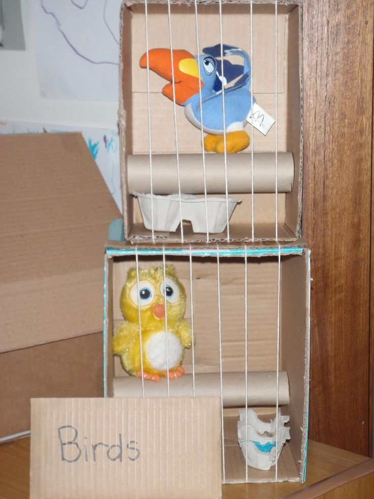 Bird cages.  Attached string to a long piece of cardboard and blu-tac to top to easily access inside cage.  egg carton feed and water dishes