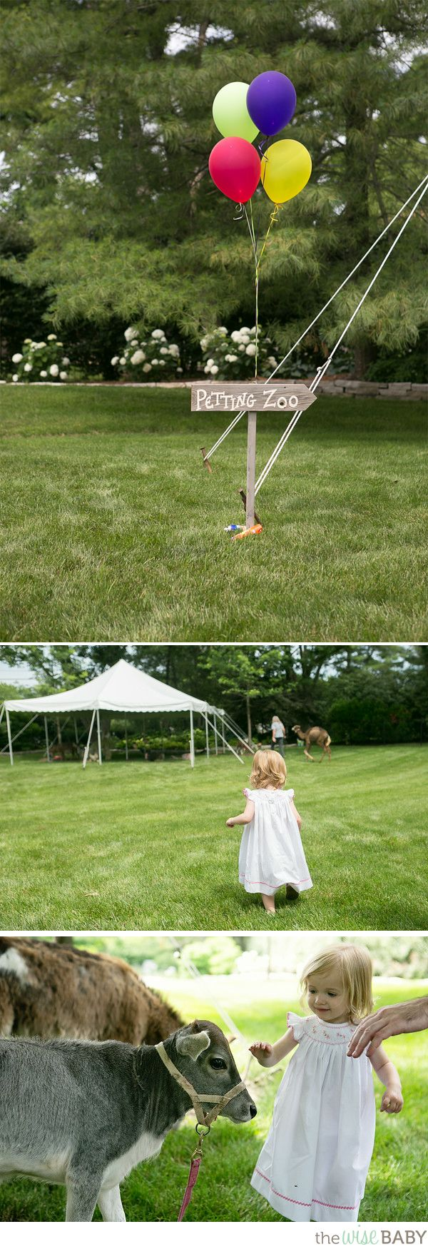 Eloise's Petting Zoo Birthday Party
