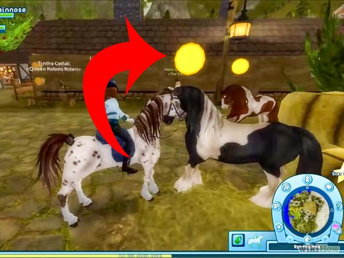 Star Stable Google Search Horses Pinterest Star Stable