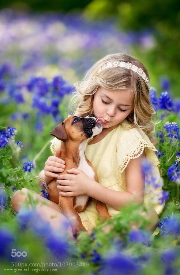 girl loves her boxer puppy kisses