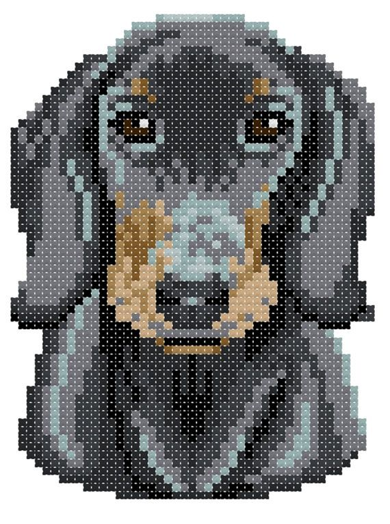 Black & Tan Dachshund counted cross-stitch by 5PrickedFinger5