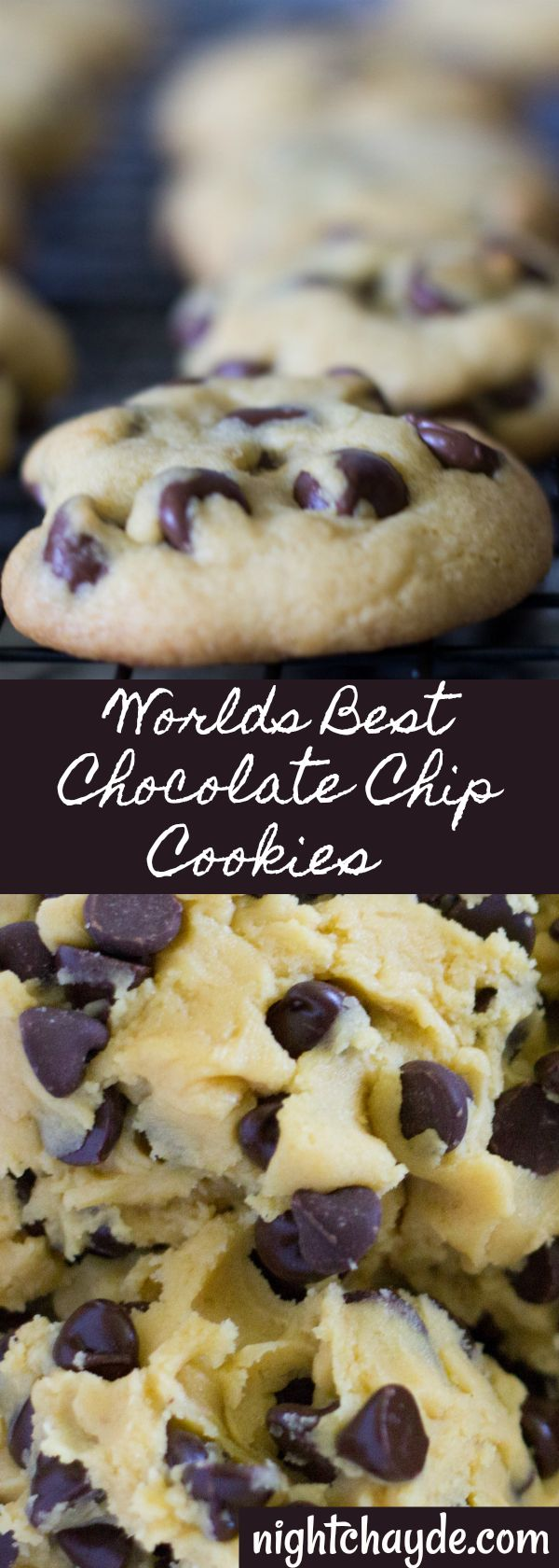 The Worlds Best Chocolate Chip Cookie: Chewy Warm and easy to make.