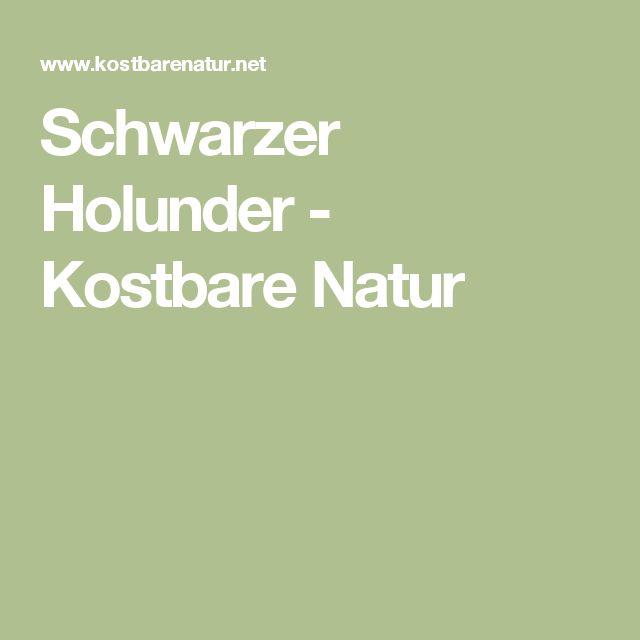 Schwarzer Holunder - Kostbare Natur