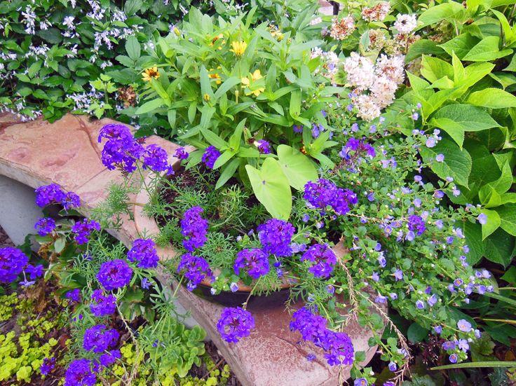 Best Garden Images On Pinterest Landscaping Gardening And