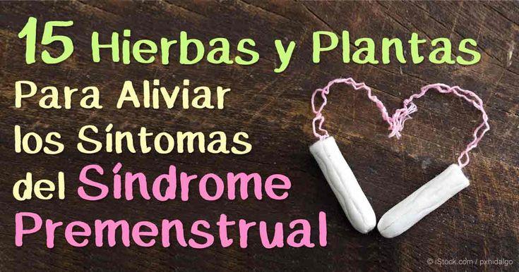 Estos 15 remedios herbales podrían ayudar a calmar naturalmente los dolorosos calambres premenstruales u otros síntomas de los problemas premenstruales  http://articulos.mercola.com/sitios/articulos/archivo/2016/02/17/remedios-para-el-sindrome-premenstrual.aspx