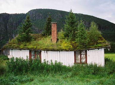 Roof Garden by Renata Gierlach: Turf roof near Gol, Norway. #Green_Roof #Renata_Gierlach