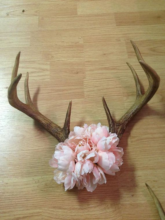 Pink Deer Antler by SouthernDiscoveriesA on Etsy, $56.00