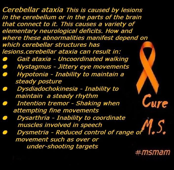 Cerebellar ataxia indicates ataxia due to dysfunction of the cerebellum. This is caused by lesions in the cerebellum or in the parts of the brain that connect to it. This causes a variety of elementary neurological deficits. How and where these abnormalities manifest depend on which cerebellar structures has lesions.cerebellar ataxia can result in: ● Gait ataxia - Uncoordinated walking ● Nystagmus - Jittery eye movements ● Hypotonia - Inability to maintain a steady posture ●…