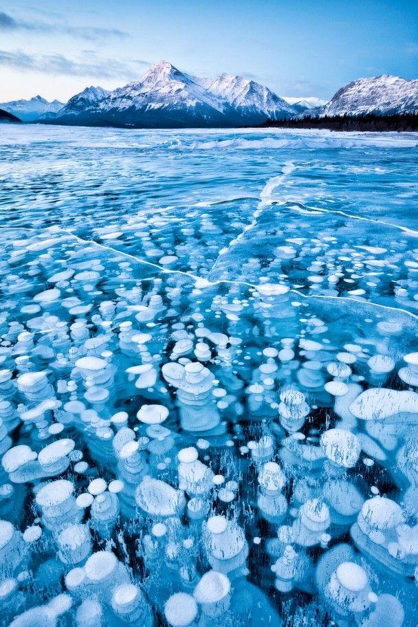 Frozen lake bubbles, Alberta, Canada