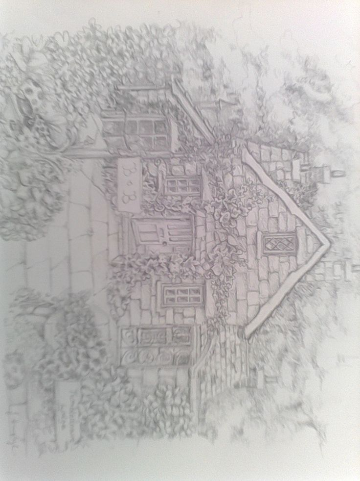 pencil drawing of a house among forestry, breath taking detail. :)