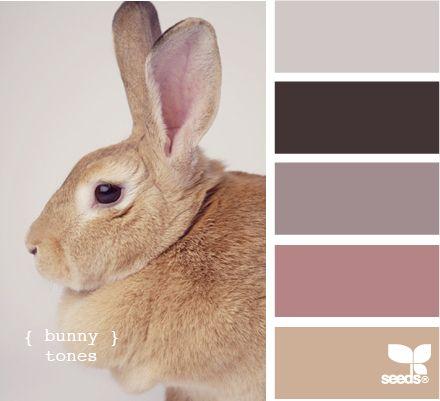 bunny tones paars