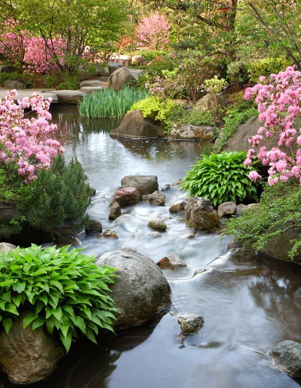 Anderson Japanese Gardens                 Ranked the top Japanese Garden in North America! Beautiful stream!